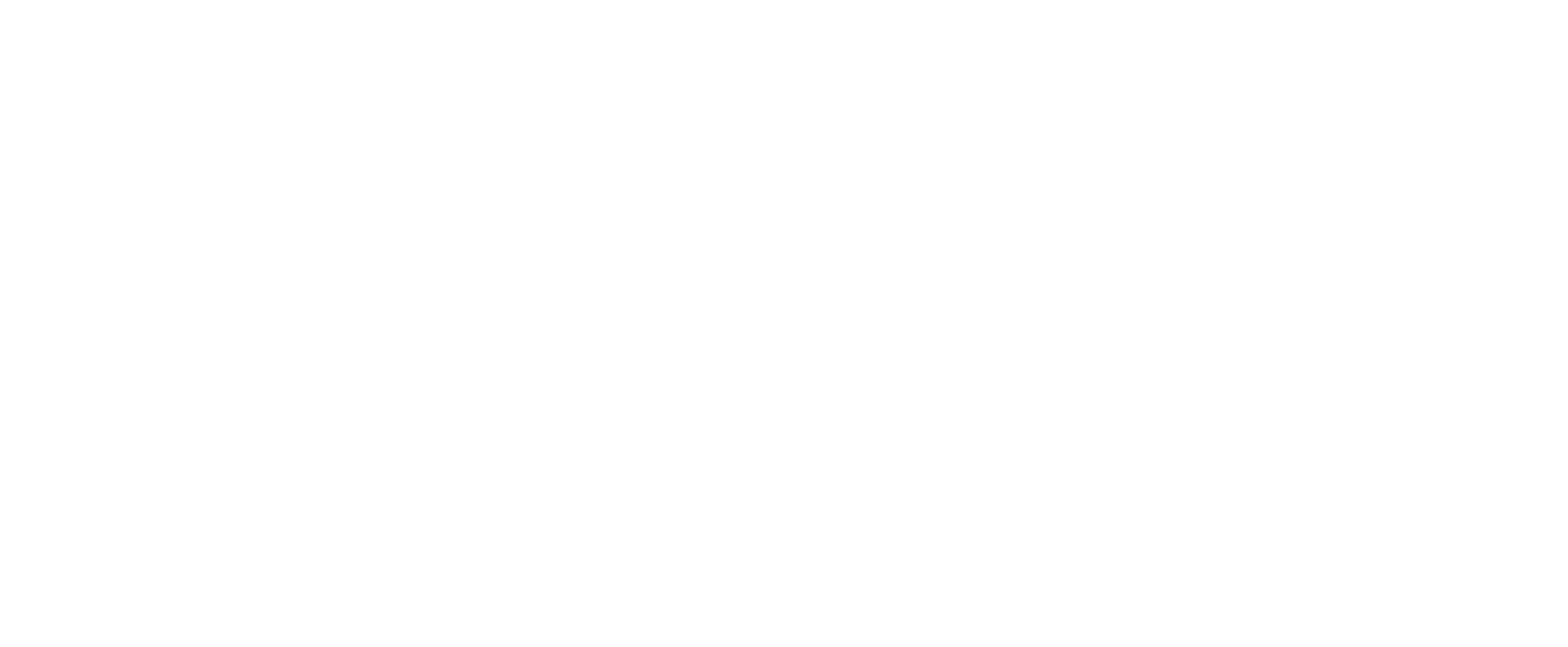 4MAX Information Systems